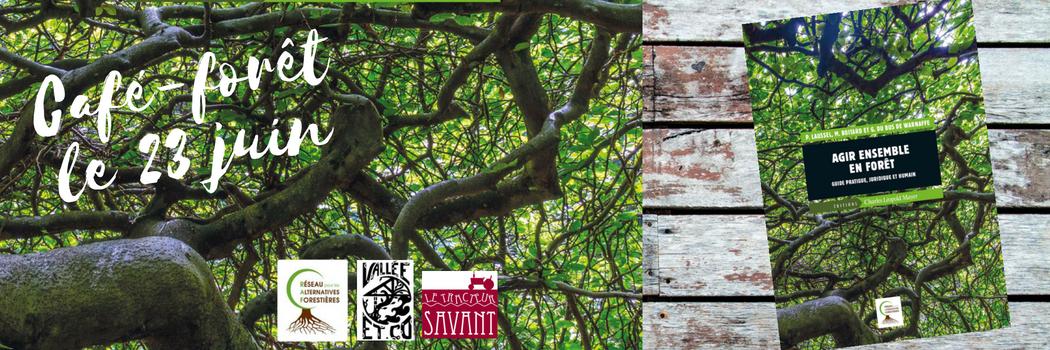 Café forêt le 23 juin